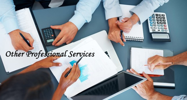 OTHER-PROFESSIONAL SERVICES-ACCOUNTING-GST-TAX-CONSULTANTS-CONSULTANCY-JAYANAGAR-9TH BLOCK-BANGALORE